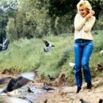 popfoto 1981 6